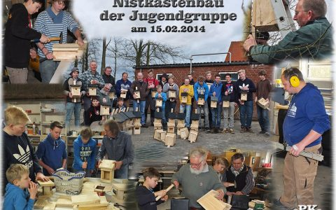 Projekt Nistkastenbau 2014