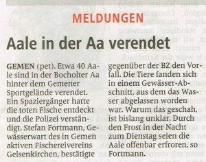 Borkener Zeitung 04.03.2015
