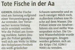 Borkener Zeitung 08.06.2015
