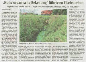 Borkener Zeitung 20.06.2015
